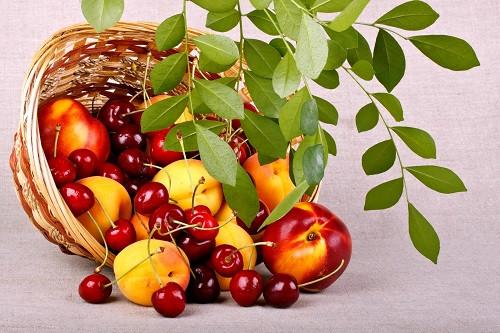 proizvodstvo-fruktovyh-konservov-dlya-detskogo-pitaniya3