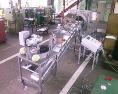 proizvodstvo-kvashenoy-kapusty2