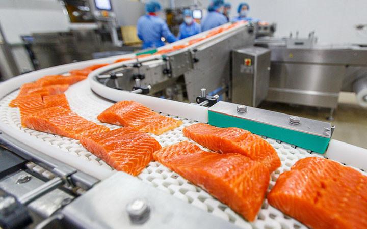 proizvodstvo-rybnyh-konservov3